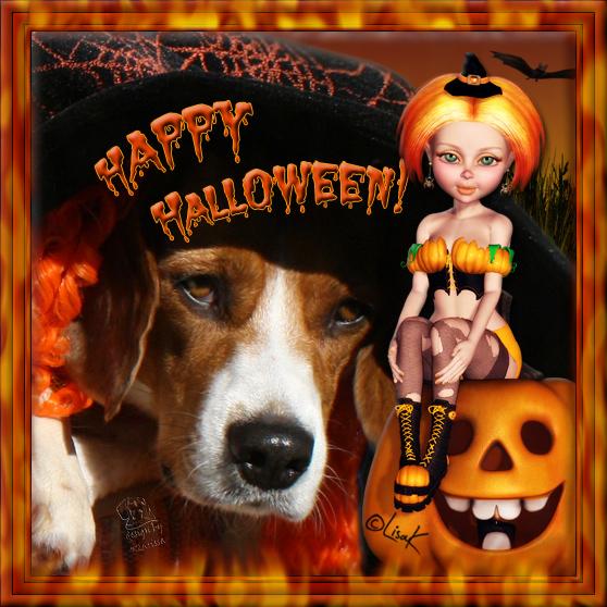 Carry wünscht Happy Halloween!
