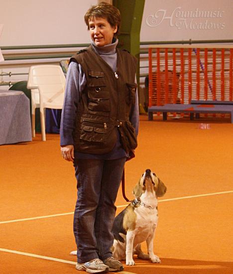 Beagle&Frauchen warten auf das Kommando...