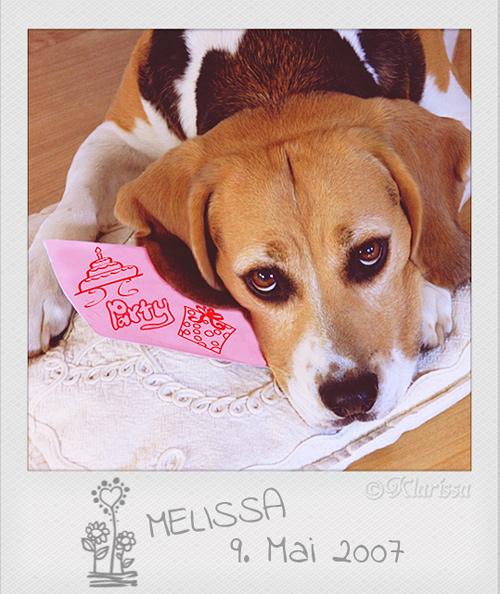 Lissa Geburtstag