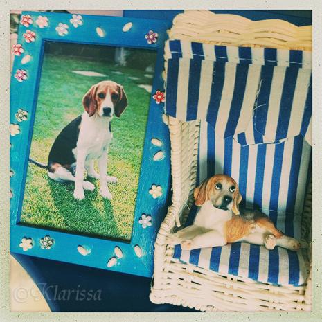Beagle-Deko