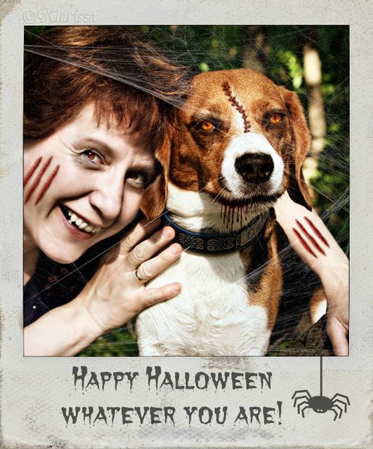 Halloweenbeagle 2012
