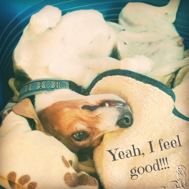 ...feel good!