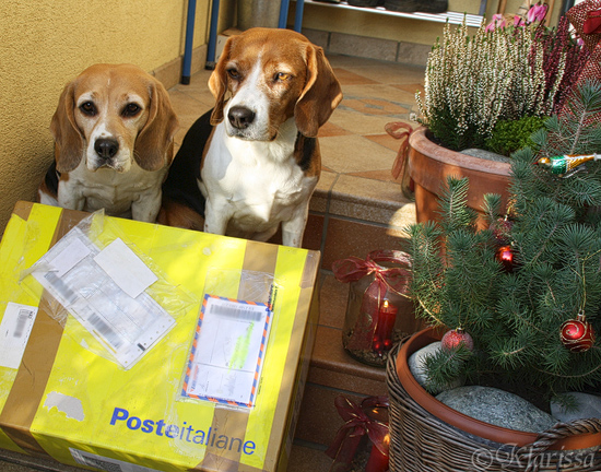 Post aus Italien!!!