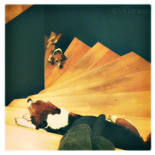 mit dem Handy surfen im Treppenhaus