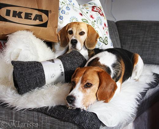 kuscheliges Ikea-Fell für die Beagles