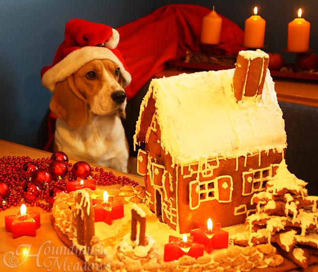 Weihnachtsdana2