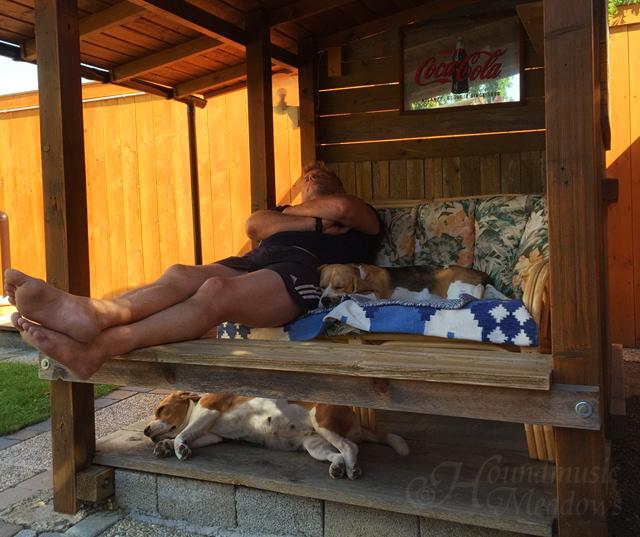 Nachmittagsschlaferl mit Herrchen